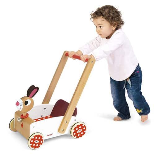 Crazy Cart Baby Walker Assistant